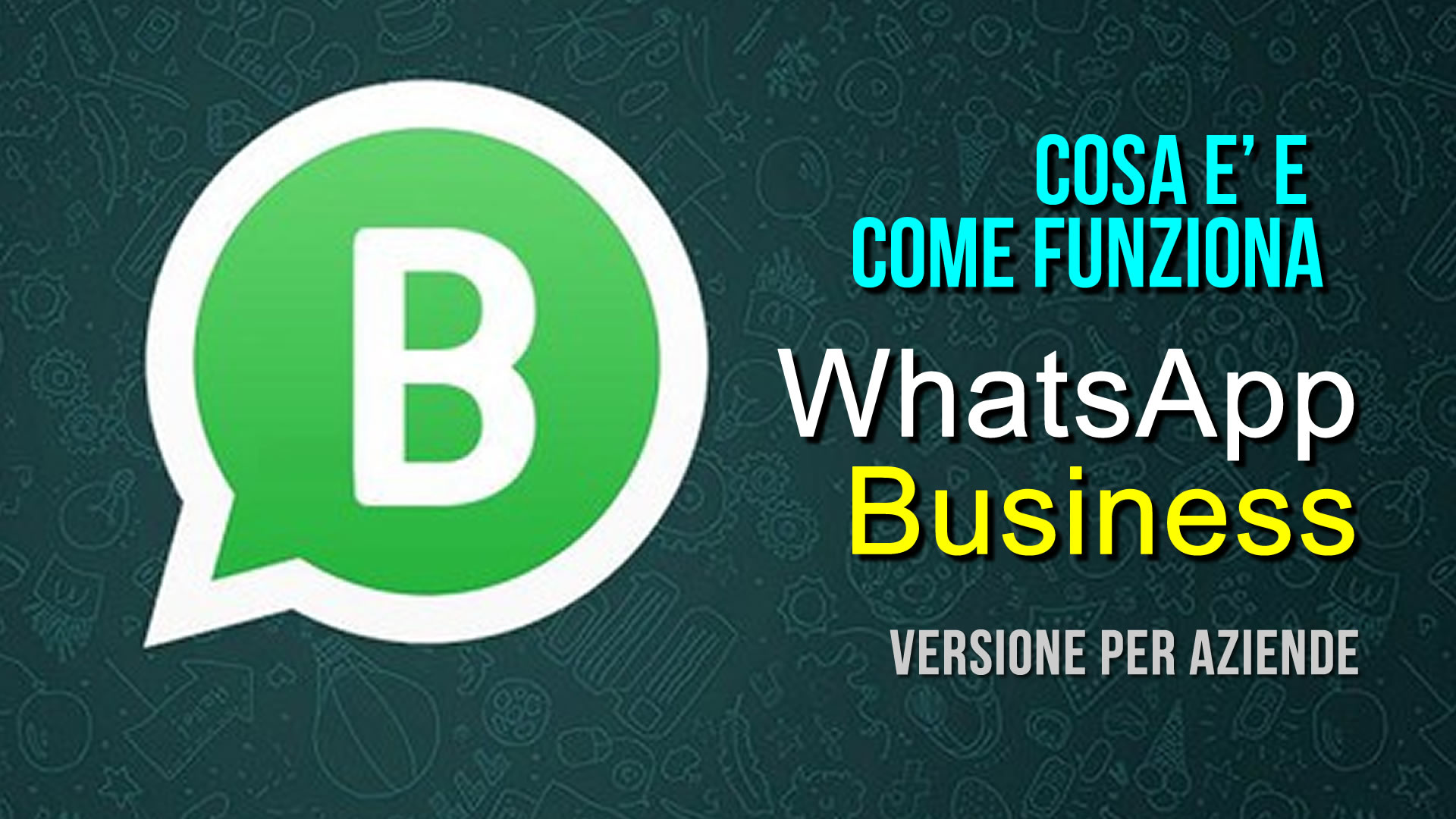 come funziona whats up business?